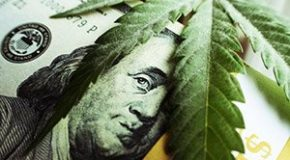 Thanks to Europe, Our Biggest Legal Weed Play Could Be a Blockbuster