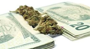 New York Banks Could Soon Open Their Arms to the $10 Billion Marijuana Industry