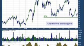 Cognizant Technology Solutions Corp (NASDAQ: CTSH)