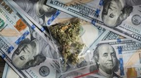 Cannabis News: Cash Is King