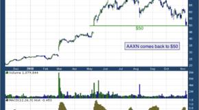 Axon Enterprise Inc (NASDAQ: AAXN)