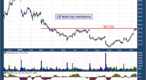 L Brands Inc (NYSE: LB)