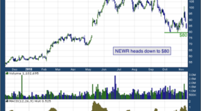 New Relic Inc (NYSE: NEWR)