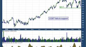 Costco Wholesale Corporation (NASDAQ: COST)