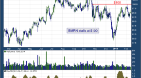 BioMarin Pharmaceutical Inc. (NASDAQ: BMRN)