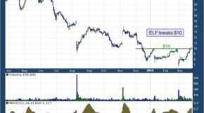 e.l.f. Beauty Inc (NYSE: ELF)