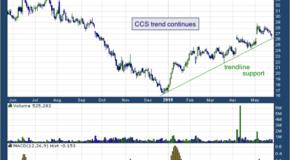 Century Communities Inc (NYSE: CCS)