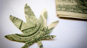 1 Hot Marijuana Stock to Buy in June