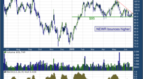 New Relic Inc (NYSE: NEWR)