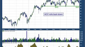 American Campus Communities, Inc. (NYSE: ACC)