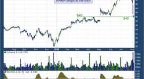 Bruker Corporation (NASDAQ: BRKR)