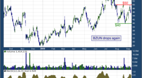 Baozun Inc. (NASDAQ: BZUN)