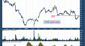 Hain Celestial Group Inc (NASDAQ: HAIN)