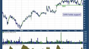 Aaron's, Inc. (NYSE: AAN)