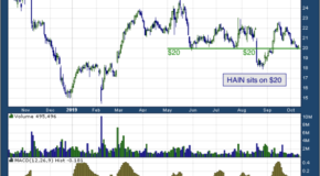 Hain Celestial Group Inc (NASDAQ: HAIN)