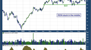 Radian Group Inc (NYSE: RDN)