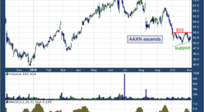 Axon Enterprise Inc (NASDAQ: AAXN)