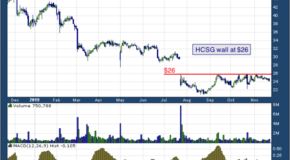 Healthcare Services Group (NASDAQ: HCSG)