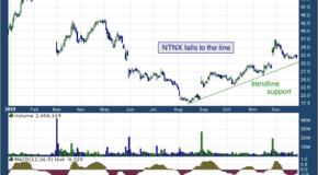 Nutanix, Inc. (NASDAQ: NTNX)