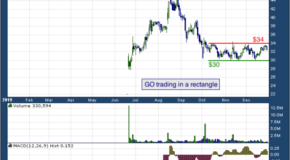 Grocery Outlet Holding Corp. (NASDAQ: GO)