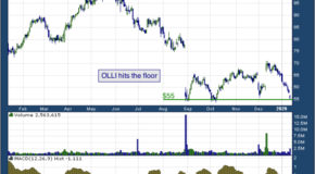 Ollie's Bargain Outlet Holdings Inc (NASDAQ: OLLI)