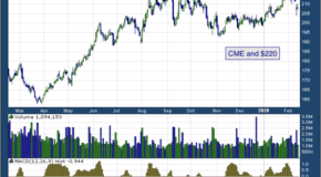 CME Group Inc (NASDAQ: CME)