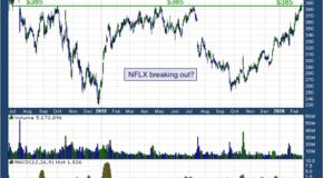 Netflix Inc (NASDAQ: NFLX)