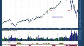 Apple Inc. (NASDAQ: AAPL)