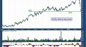 Arch Capital Group Ltd. (NASDAQ: ACGL)