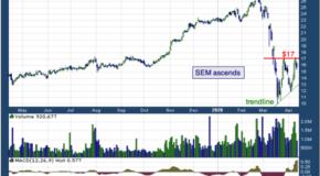 Select Medical Holdings Corporation (NYSE: SEM)