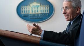 A Trump Adviser's BLISTERING Attack on Fauci…