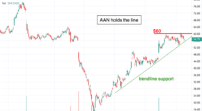 Why You Should Expect a Significant Move in Shares of Aaron's (AAN)