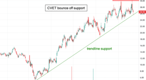 Breakout for Covetrus (CVET) in the Charts?