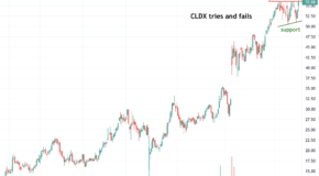 Is Celldex Therapeutics (CLDX) Headed for a Breakout?
